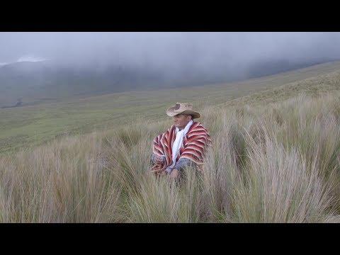 Out of Quito and into Ecuador's Wild I Condé Nast Traveler