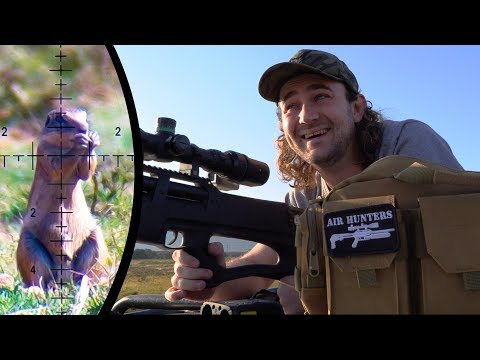 More PCP Airgun Ground Squirrel Hunting -