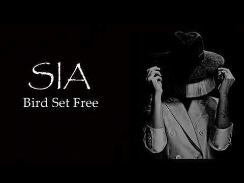 Sia - Bird Set Free (Tłumaczenie PL)