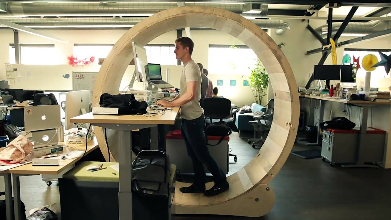 Hamster Wheel Standing Desk Youtube