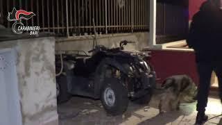 Mafia a Bari, blitz dei carabinieri all'alba: arrestate 11 persone
