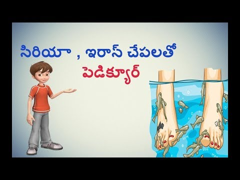 How To Do Pedicure With Fishes In  Telugu Explained