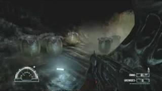 "Aliens vs Predator: Harsh Language Guide Part Three ""Jungle"""