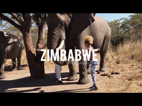 Zimbabwe Travel Vlog! #FroGirlAdventures