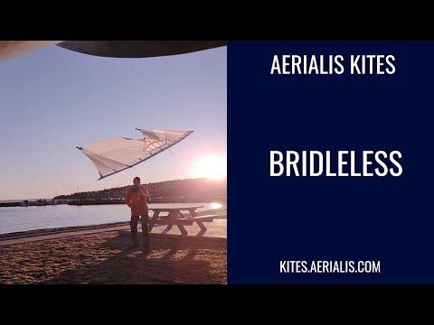 Bridleless