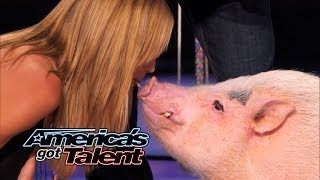Heidi Klum Kisses a Pig on America