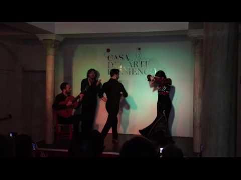 2016 スペイン旅行 Casa del Arte Flamenco  カーサデルアルテ グラナダ
