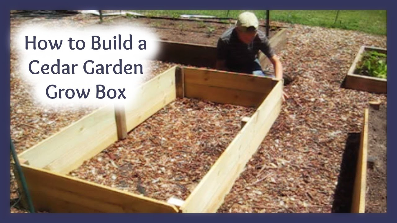 Build A Cedar Garden Box For About $8.00