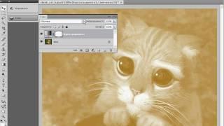 Стилизация фотографии в тональность сепии в Photoshop (29/40)