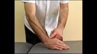 Epicondilitis. Ejercicios estiramiento