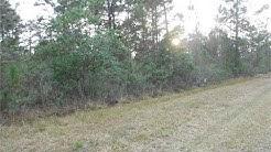 Residential for sale - 405 CAMELLIA DRIVE, Indian Lake Estates, FL 33855