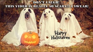 Scary Halloween Music ♡ Don't laugh, it's so scary!!!