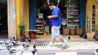 Bow Family (低头族) This Video For All Smart Phone User.mp4(Inhouse Multimedia College VideoGrapher- Ferenc Editing - Ferenc., 2013-02-26T13:45:42.000Z)