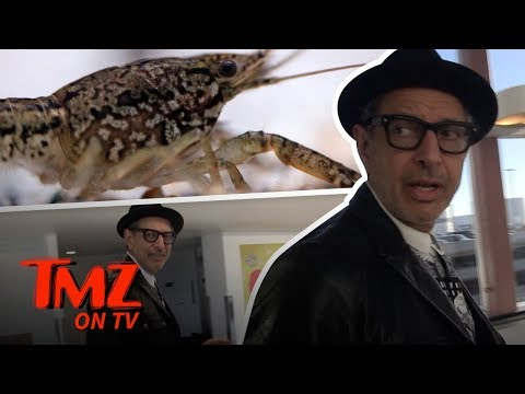 Mutant Crawfish Are Going To Take Over The World | TMZ TV