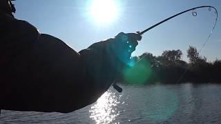 Такого поворота на рыбалке не ожидал. Но финиш был особенным.