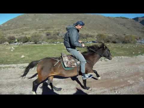 Horse trip in Kyrgyzstan