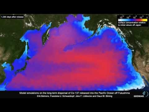 Fukushima radioactive contamination dispersion in the for Pacific ocean radiation fish