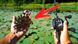 Для чего перец на рыбалке