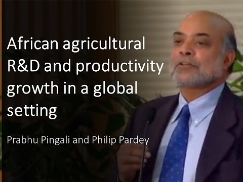 African agricultural R&D and productivity growth in a global setting