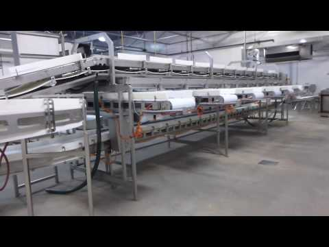Maple Leaf Foods Thamesford Turkey Plant - Onsite/Online Auction