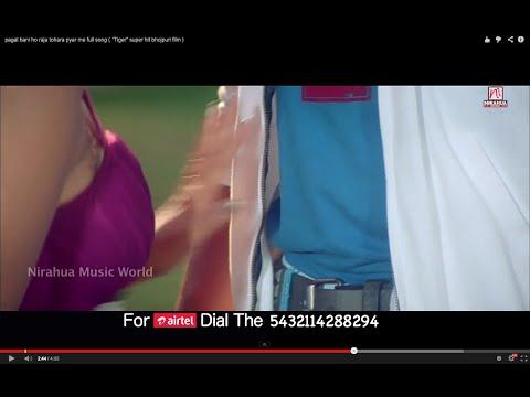 pagal bani ho raja tohara pyar me full song ( ''Tiger'' super hit bhojpuri film )