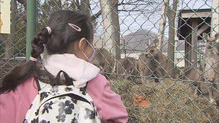 1ヵ月ぶり営業再開!円山動物園・テレビ塔・時計台【HTBニュース】