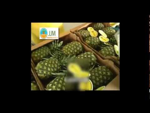 JJM Pineapple EXPORT S.A.