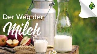 Der Weg der MILCH in Österreich - Trailer