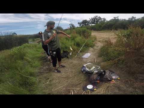 Grant Lake San Jose CA Fishing