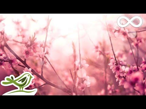 Beautiful Piano Music: Romantic Music, Relaxing Music, Sleep Music, Study Music ★139
