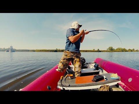 ЭТО ПРОСТО МАГИЯ! ! ЛОВЛЯ СОМА НА КВОК! Рыбалка по Русову