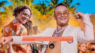 MORGENSHTERN X ШАРЛОТ X Mikis X James Browns - Малышка (Puer Radio Mash Up)