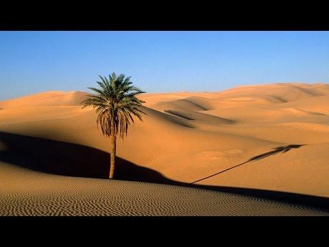 Ancient Arabian Music - Scorpion Desert
