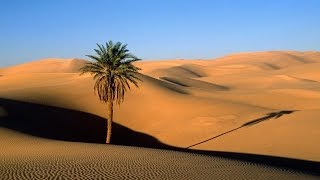 Ancient Arabian Music - Scorpion Desert