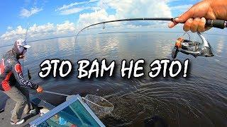 Веселая рыбалка на Киевском Море! Сом, судак, окунь на каждом забросе!)