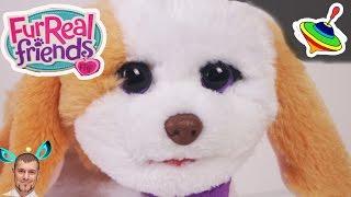 Озорные зверята щенок \ my bouncing doggy Furreal Friends