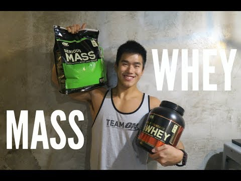 whey-protein-or-mass-gainer?-(tips-for-beginner)