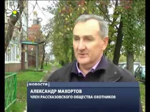 Знакомства в Рассказово (Тамбовская область)