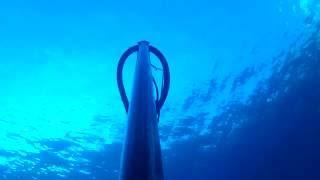 ψαροντουφεκο ερασιτεχνικο στα ρηχα μηλος-shallow water spearfishing