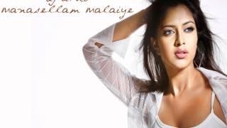 dJ aThi - Manasellam Malaiye (remix)