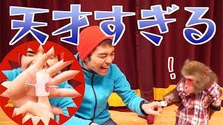 おサルに「飼い主の指に釘刺さってる」ドッキリ!→うちの子天才すぎて困る。。。 thumbnail