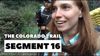 The Colorado Trail, Segment 16 - We See A Moose! (And I never want to be that close to one again)
