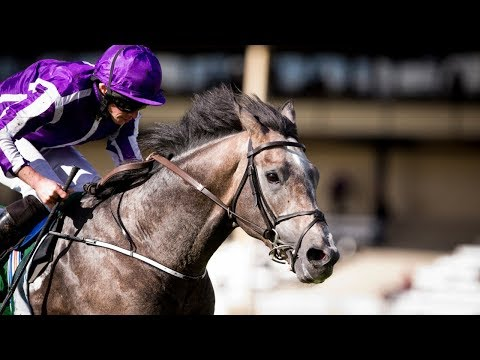 Capri - Dubai Duty Free Irish Derby (2017)