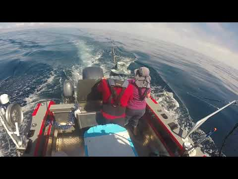 Tuna Trip Sept 2  Out Of Winchester Bay OR
