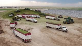 PMS & Harvesting clamping 1200 tonnes per hour in Texas