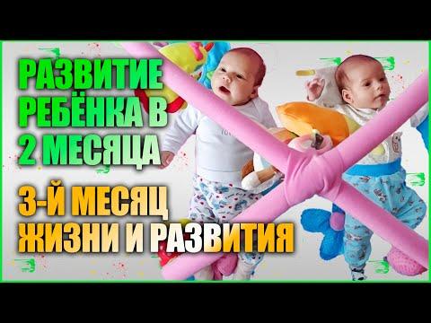3-й месяц развития новорожденных. Ребёнок в 2 месяца.