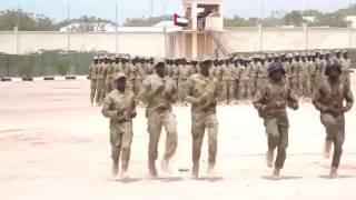 Qaar kamida Ciidamada Somalia oo tababar loo furay