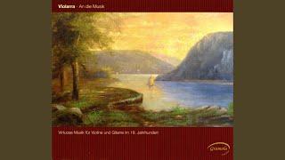 Gran Duetto Concertante, Op. 52: II. Menuetto: Allegro vivace