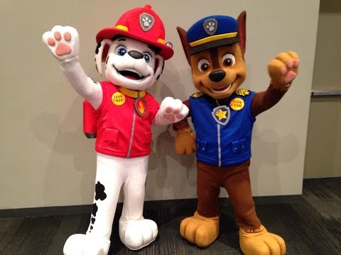 Paw Patrol Birthday Party Visit Party Characters For