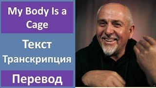Скачать Peter Gabriel My Body Is A Cage текст перевод транскрипция
